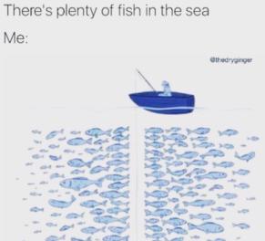 plentyfish.png