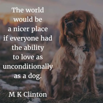 M-K-Clinton-on-Dogs